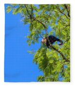 Costa Rica Capuchin Momma And Baby Aboard Fleece Blanket