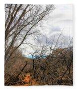 Cottonwood Arizona Jail Trail Trees Path Sky Clouds 5229 Fleece Blanket