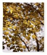 Cozy Fall Day Fleece Blanket