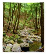 Creek In Massachusetts 2 Fleece Blanket