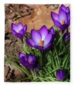Crocus In Spring 2019 I Fleece Blanket