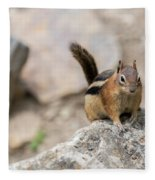 Curious Chipmunk Fleece Blanket