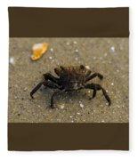 Curious Crab Fleece Blanket
