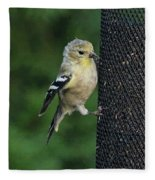 Cute Goldfinch At Feeder Fleece Blanket