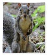 Cute Squirrel Fleece Blanket