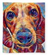 Dachshund 6 Fleece Blanket