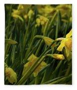 Daffodil Starlight Fleece Blanket