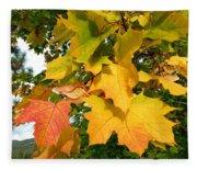 Days Of Autumn 24 Fleece Blanket