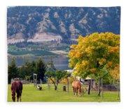 Days Of Autumn 25 Fleece Blanket