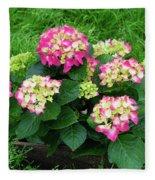 Decorative Floral Pink Hydrangeas C031619 Fleece Blanket by Mas Art Studio