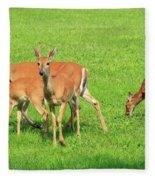 Deer Looking At You Fleece Blanket