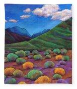 Desert Valley Fleece Blanket