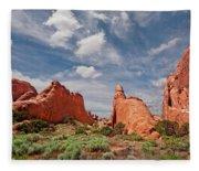 Dinosaur Shaped Rock Fleece Blanket