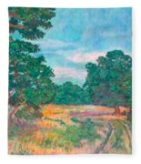 Dirt Road Near Rock Castle Gorge Fleece Blanket