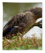 Duck 3 Fleece Blanket