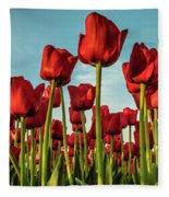 Dutch Red Tulip Field. Fleece Blanket