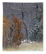 Early Winter On The Western Edge Fleece Blanket