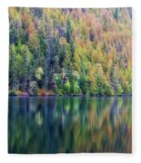 Echo Lake Autumn Shore Fleece Blanket