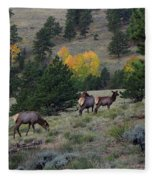 Elk - 1964 Fleece Blanket