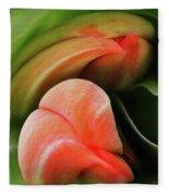 Emerging Tulips Fleece Blanket