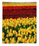 Endless Tulip Fields Fleece Blanket