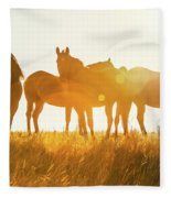Equine Glow Fleece Blanket
