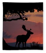 Fallow Stag At Sunset Fleece Blanket