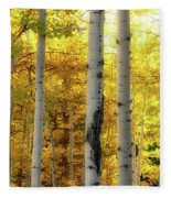 Fall's Visitation Fleece Blanket by Rick Furmanek