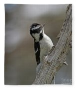 Female Downy Woodpecker Fleece Blanket