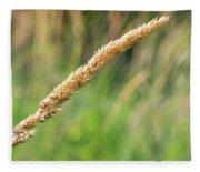 Field Grass Fleece Blanket
