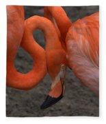 Flamingo Couple Fleece Blanket