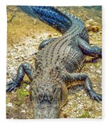 Florida Gator 2 Fleece Blanket
