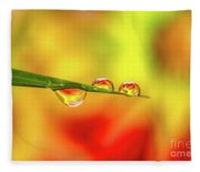 Flower In Water Droplet Fleece Blanket