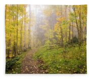Foggy Winsor Trail Aspens In Autumn 2 - Santa Fe National Forest New Mexico Fleece Blanket