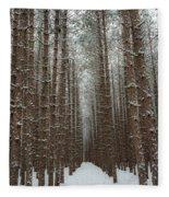 Forest In Sleeping Bear Dunes In January Fleece Blanket