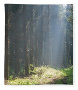 Forrest And Sun Fleece Blanket
