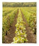 French Vineyards Of The Champagne Region Fleece Blanket