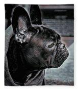 Frenchie Fleece Blanket by Susan Maxwell Schmidt