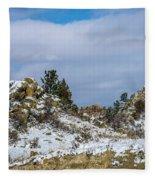 Frosting On The Backbone Fleece Blanket