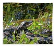Gator Brood Fleece Blanket
