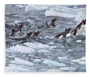 Gentoo Penguins By Alan M Hunt Fleece Blanket