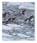 Gentoo Penguins By Alan M Hunt Fleece Blanket