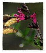 Glowing Wings Of A Hummingbird Fleece Blanket