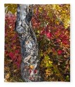 Gnarled Tree Trunk - Dezadeash Lake - Yukon Territory  Fleece Blanket