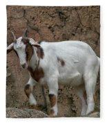 Goat Print 9245 Fleece Blanket