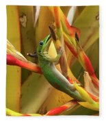 Gold Dust Gecko  Fleece Blanket