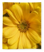 Golden Daisy Fleece Blanket