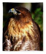 Golden Eagle Portrait Fleece Blanket