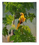 Golden Parakeet In Papaya Tree Fleece Blanket