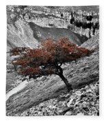 Gordale Scar Tree Fleece Blanket